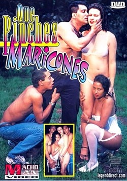 Que Pinches Maricones Cover