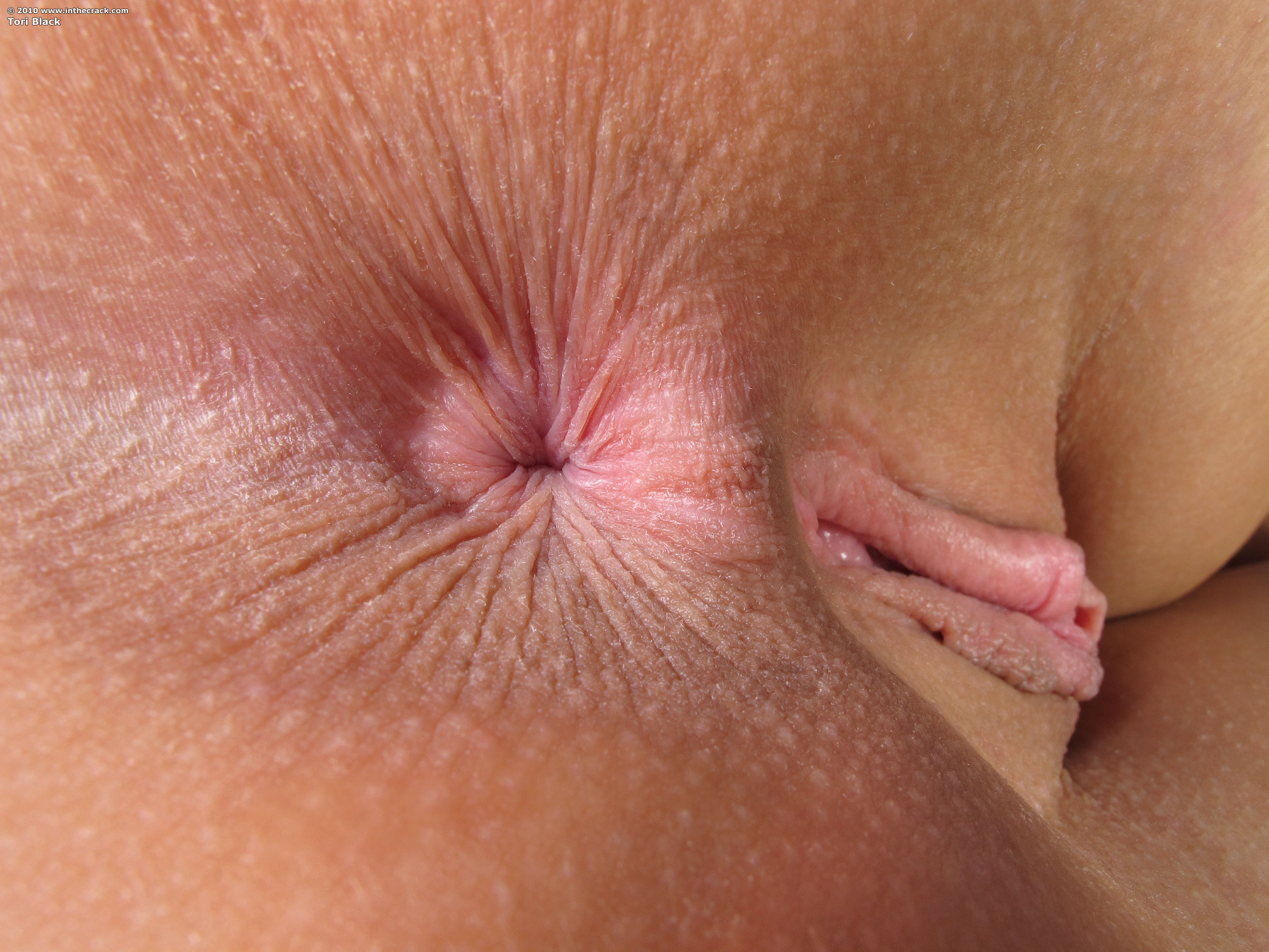 Beautiful anal hole