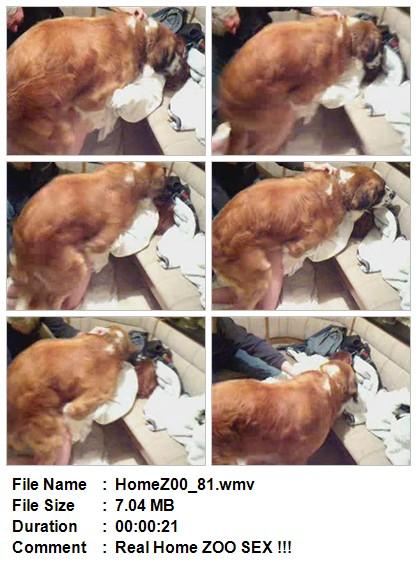 File Name HomeZ00_81