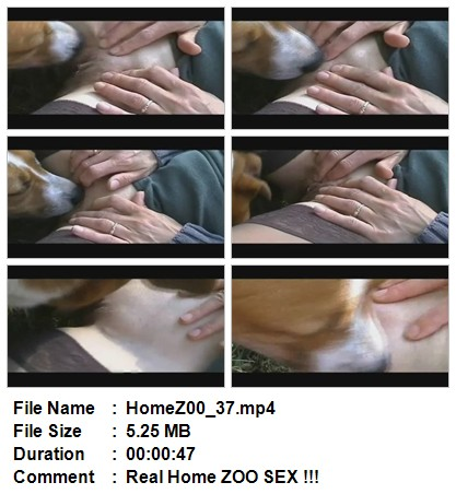 File Name HomeZ00_33