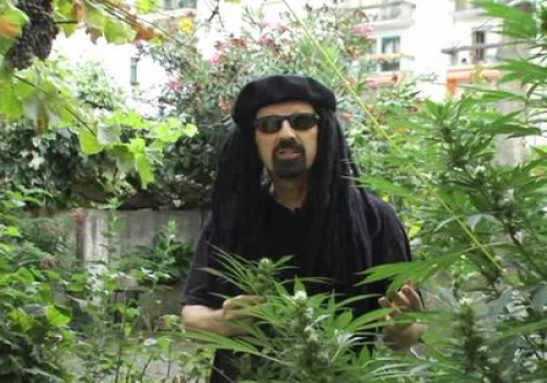 Jorge20CervantesUltimate20Grow0201 - Marihuana horticultura del cannabis - Jorge Cervantes