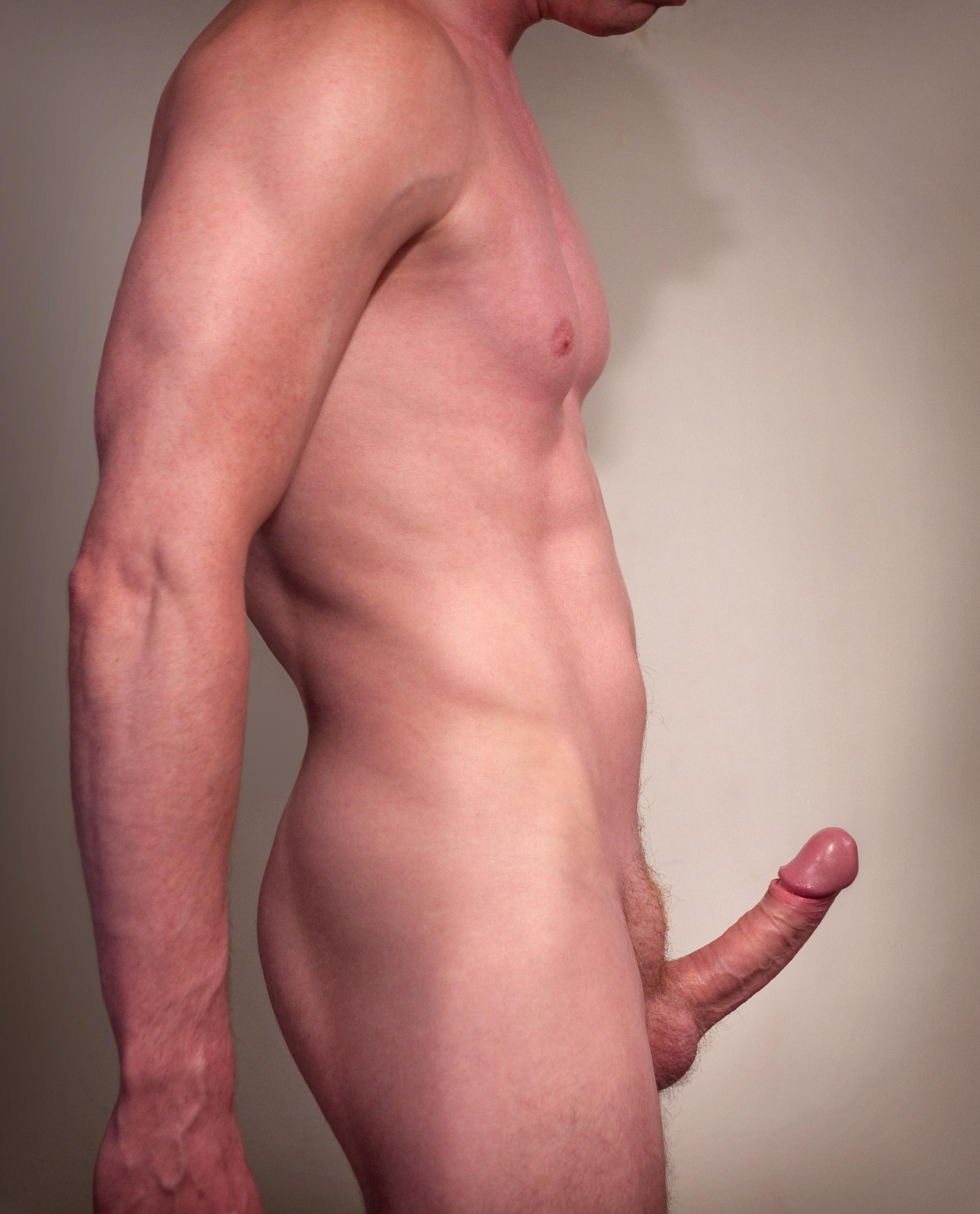 Erection Male Sex Organ Penis Stock Vector