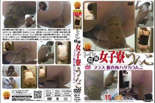 E37-11 (toilet cam)  Asian Scat Scat Voyeur