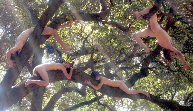 Naked Girl On A Tree