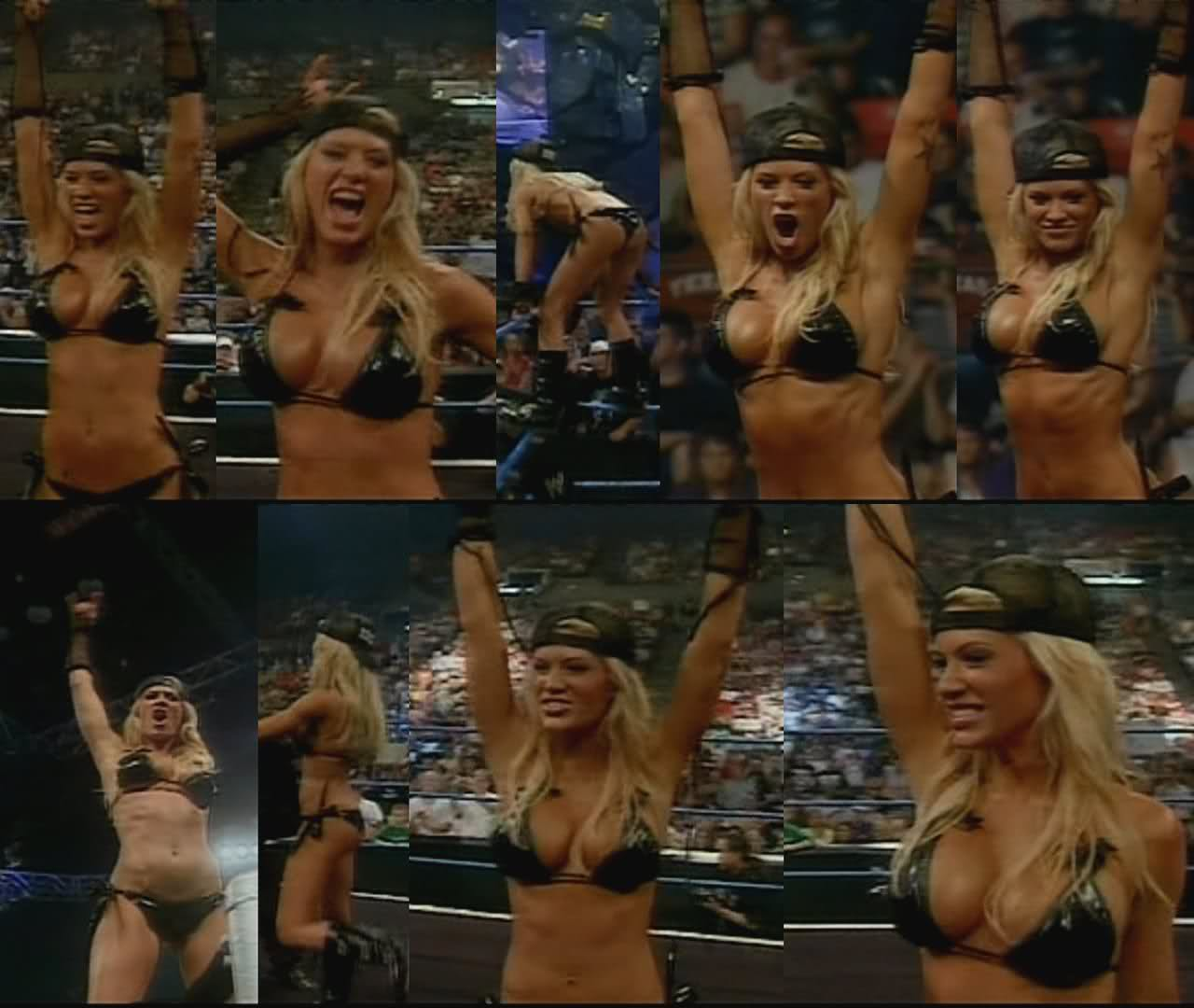 Ashley massaro wwe toples